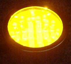 LED amber pond light